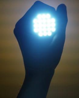 Taschenlampe Augen Checken Tierpuls 2728582